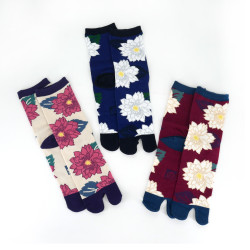Japanese tabi cotton socks, KIKU