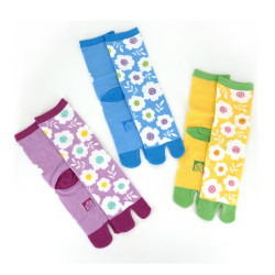Japanese tabi cotton socks, NARA